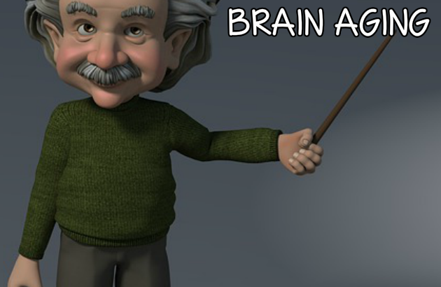 tips to slow down brain aging